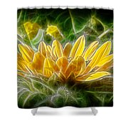 Satiated Shower Curtain