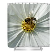 Satin Sheets Shower Curtain