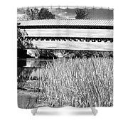 Saucks Bridge And Reeds Shower Curtain