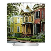 Savannah Architecture Shower Curtain