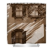Savannah Sepia - Windows Shower Curtain