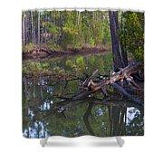 Save The Marsh Shower Curtain