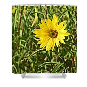 Save The World Little Bee Shower Curtain