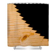 Saw Shadow Shower Curtain by Stephan Pietzko
