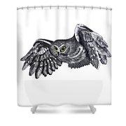 Saw-whet Owl Shower Curtain