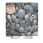 Scallop Shell And Black Stones Shower Curtain