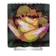 Scanned Rose Water Color Shower Curtain