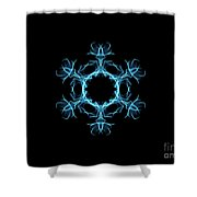 Scarab Shower Curtain