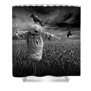 Scarecrow And Black Crows Over A Cornfield Shower Curtain