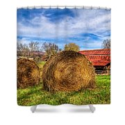 Scarecrow's Dream Shower Curtain by Debra and Dave Vanderlaan