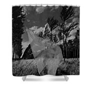 Scarf In The Winds In Black And White Shower Curtain