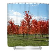 Scarlet Formation Shower Curtain