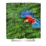Scarlet Macaw Juvenile In Flight Shower Curtain