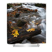 Scattered Gold Shower Curtain