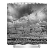 Scattered Trees Shower Curtain