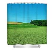 Scene In Sugarcreek Ohio Shower Curtain
