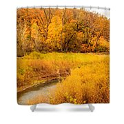 Scene Of Gold Shower Curtain
