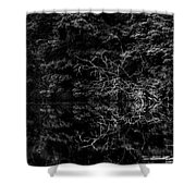 Scenic And Twisted Shower Curtain