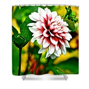 Scenic Bouquet Shower Curtain