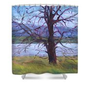 Scenic Landscape Painting Through Tree - Spring Has Sprung - Color Fields - Original Fine Art Shower Curtain