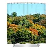 Scenic Minnesota 5 Shower Curtain