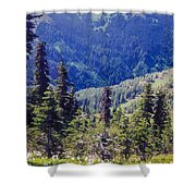 Scenic Mountain Valley Shower Curtain
