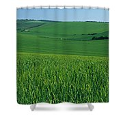 Scenic View Of A Field, South Downs Shower Curtain