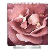 Scent Of A Rose Shower Curtain