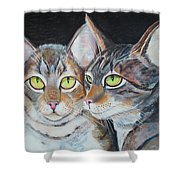 Scheming Cats Shower Curtain