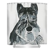 Schnauzing Around Shower Curtain