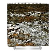 Schoharie Creek Lexington New York Catskill Mountains Shower Curtain