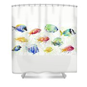 School Of Tropical Fish Shower Curtain