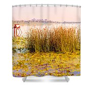 Scirpus In The River Shower Curtain
