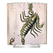 Scorpio Constellation  1825 Shower Curtain