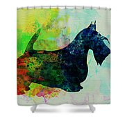 Scottish Terrier Watercolor Shower Curtain by Naxart Studio