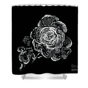 Scratched Rose Shower Curtain
