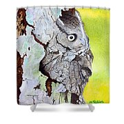Screech Owl Shower Curtain