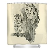 Screech Owls Shower Curtain