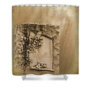 Scroll And Flowers The Forgotten Series 12 Shower Curtain