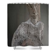 Sculpture In Stone Shower Curtain