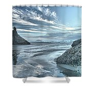 Sculptures On The Shore Shower Curtain