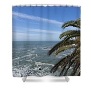 Sea And Palm Tree Shower Curtain