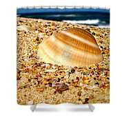 Sea Beyond The Shell Shower Curtain