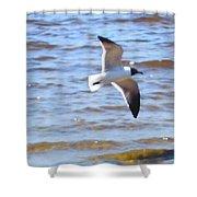 Sea Bird Shower Curtain
