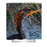 Sea Duck Shower Curtain