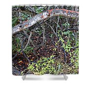 Sea Grape Jungle Shower Curtain