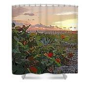 Sea Grapes And Sunset Sanibel Island Shower Curtain