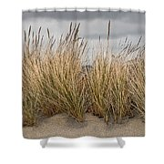 Sea Grass And Sand Shower Curtain