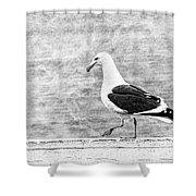Sea Gull On Wharf Patrol Shower Curtain