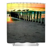 Sea Gulls On Pilings At Sunset Shower Curtain